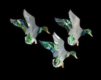 380-300 Flying Ducks (1)